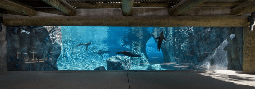 New SeaLion Exhibit